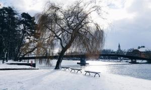 5 liebsten Tipps gegen Erkältung | Advertorial