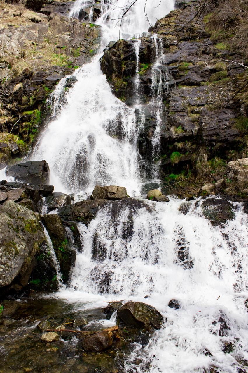 Wasserfall im Hochschwarzwald Naturdenkmal