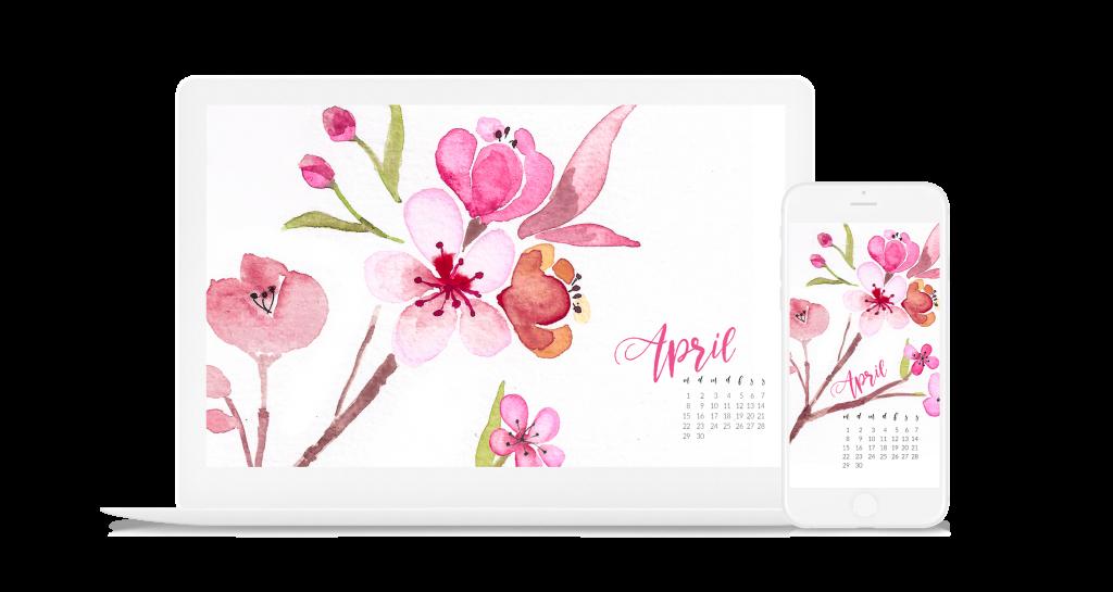 Kirschblüten Frühling Cherry Blossoms Wallpaper